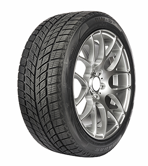 Omni Launches New Radar Rw Winter Tires