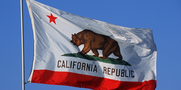 California-State-Flag-600x300