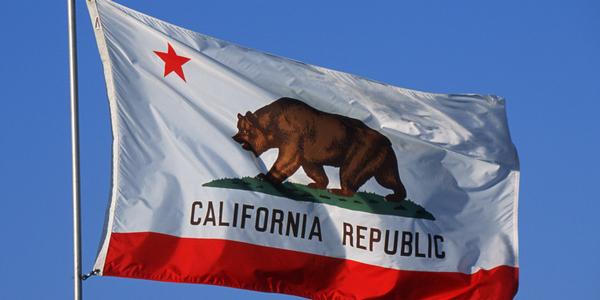 California-State-Flag-600x300