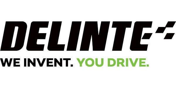 Delinte-Logo