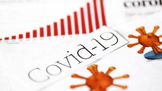 Coronavirus-Survey