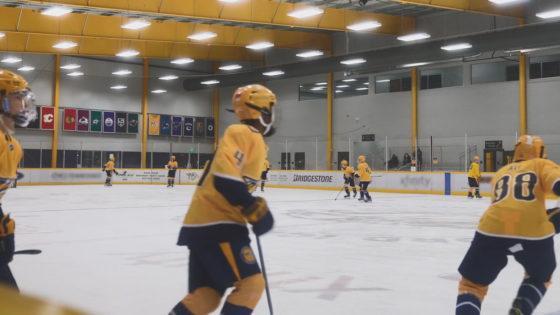 Bridgestone-NHL-Hockey-1