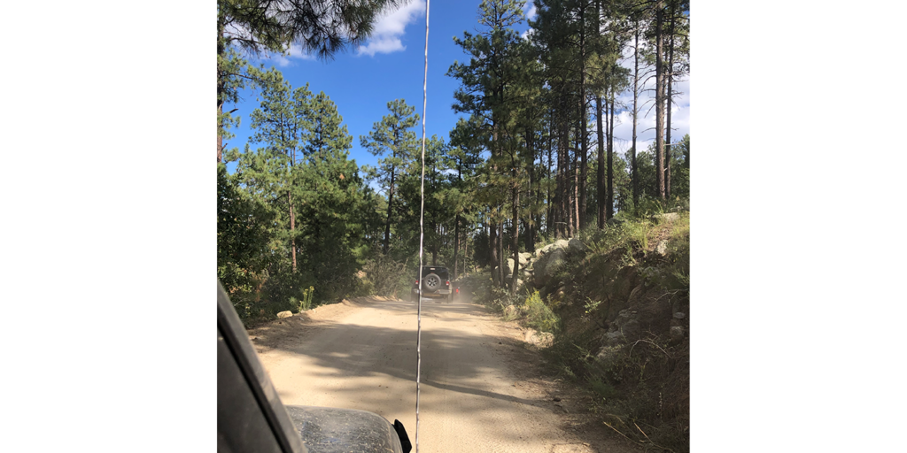 Jeep Precott national forest