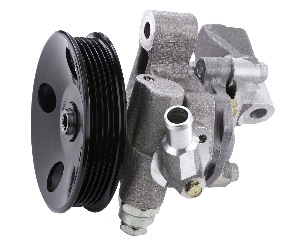most power steering pumps provide ample warning of impending failure.